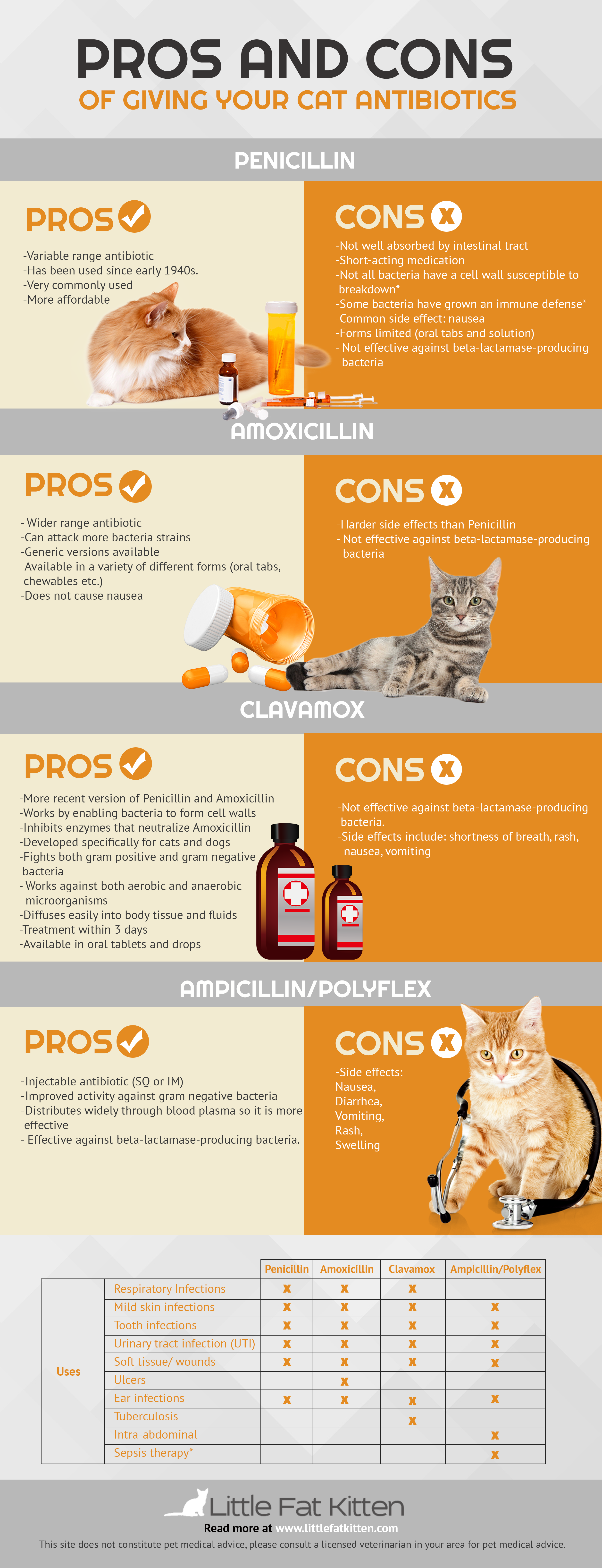 pros and cons of giving your cat penicilin